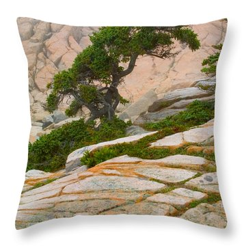 Schoodic Cliffs Throw Pillow by Brent L Ander