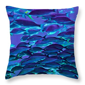 School Daze Throw Pillow by DigiArt Diaries by Vicky B Fuller