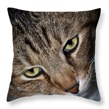 Scooter Throw Pillow by Doug Long