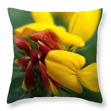 Throw Pillow featuring the photograph Scotch Broom by Chriss Pagani