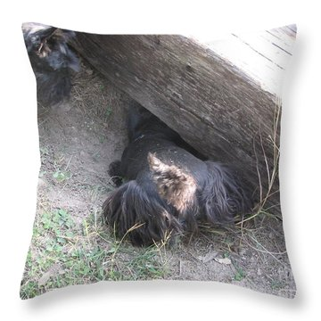 Scotty Armadillo Dance Throw Pillow