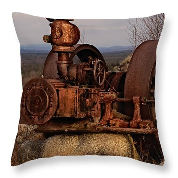 Scrap Me Not Throw Pillow by Susan Capuano