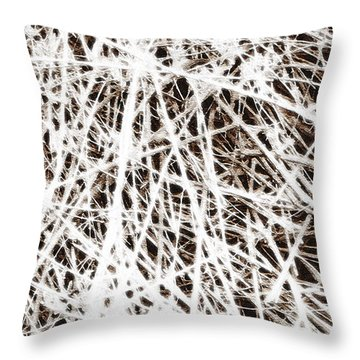 Throw Pillow featuring the photograph Scratch by Lenny Carter