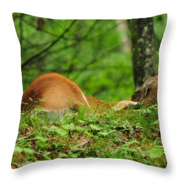 Scratching An Itch Throw Pillow by Mike Martin