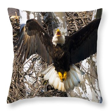 Throw Pillow featuring the photograph Screaming Eagle  by Randall Branham