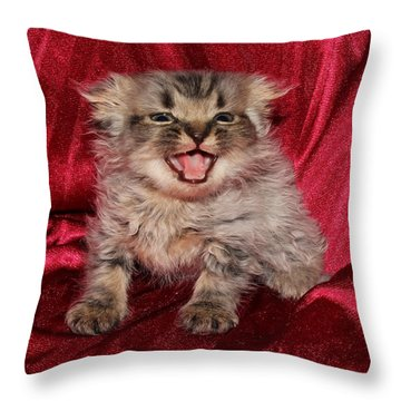 Scruffy Fold 2011 2 Throw Pillow by Robert Morin