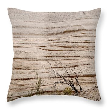 Sculpted By Nature Throw Pillow by Vicki Pelham