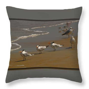 Sand And Sea Birds Throw Pillow