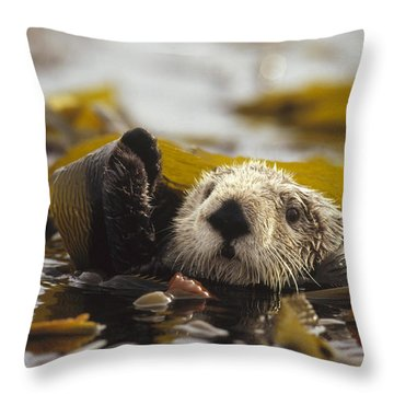 Sea Otter Enhydra Lutris Floating Throw Pillow by Gerry Ellis