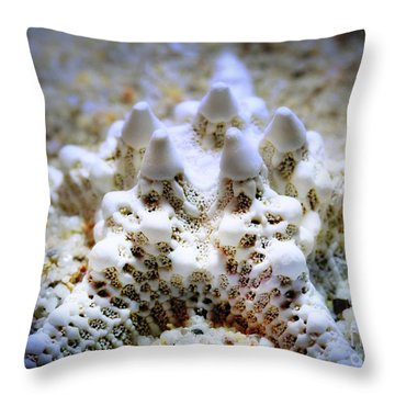 Sea Star Throw Pillow by Judi Bagwell