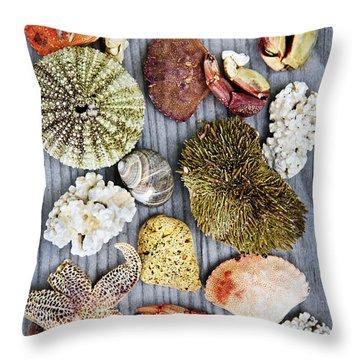 Sea Treasures Throw Pillow by Elena Elisseeva