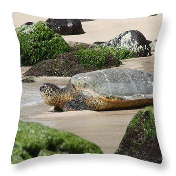 Sea Turtle 1 Throw Pillow