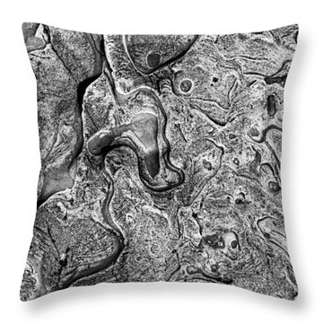 Sea Washed Stone Throw Pillow by Garry Gay