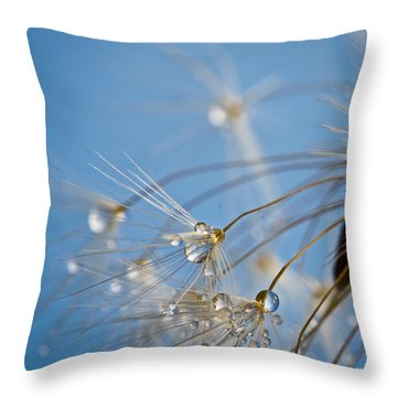 Seabreeze Throw Pillow by Tracy  Hall