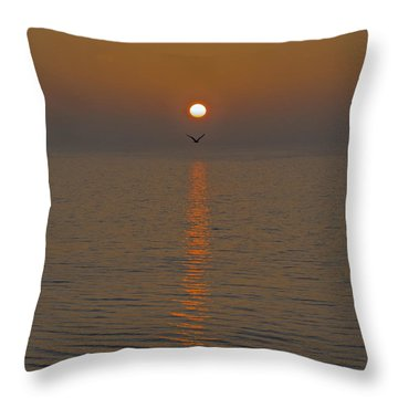 Seagull At First Light Throw Pillow by Gary Eason