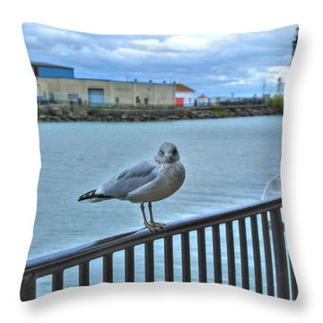 Throw Pillow featuring the photograph Seagull At Lighthouse by Michael Frank Jr