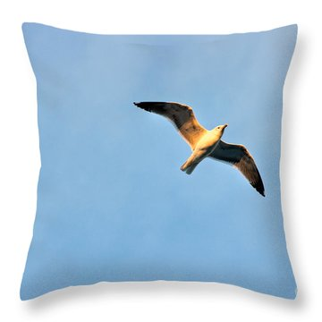 Throw Pillow featuring the photograph Seagull by Luciano Mortula