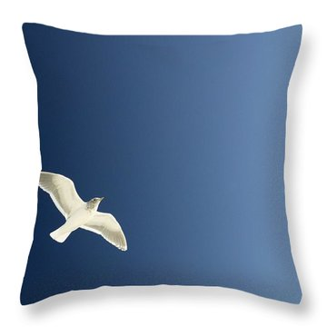 Seagull Soaring Throw Pillow by Con Tanasiuk