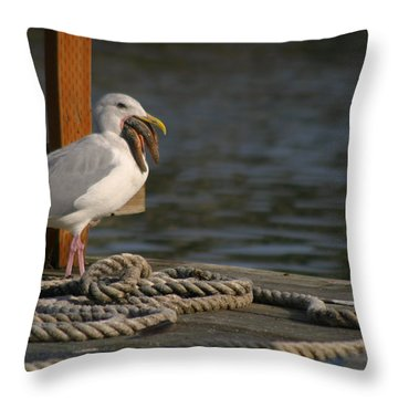 Seagull Swallows Starfish Throw Pillow by Kym Backland