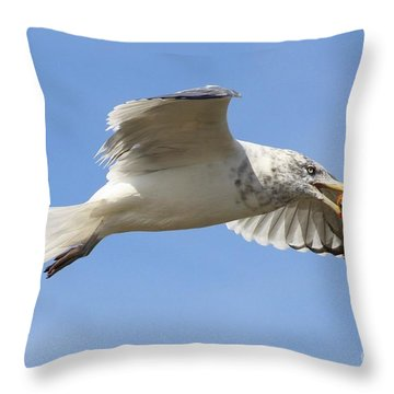 Seagull With Snail Throw Pillow by Carol Groenen
