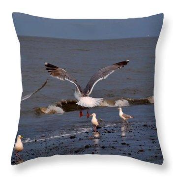 Seagulls Dip Netting  Throw Pillow by Debra  Miller