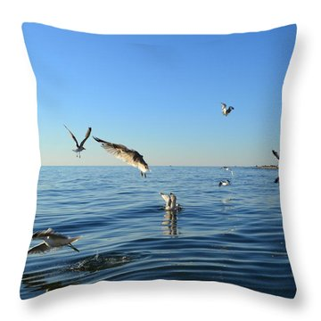 Seagulls Over Lake Michigan Throw Pillow by Michelle Calkins