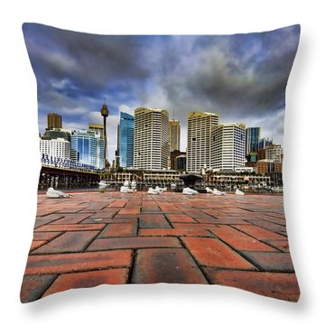 Seagull's Perspective Throw Pillow by Douglas Barnard