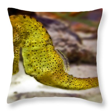 Seahorse Of Course Throw Pillow by DigiArt Diaries by Vicky B Fuller