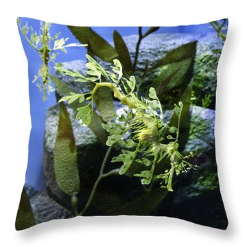 Seahorse Throw Pillow by Paul Plaine