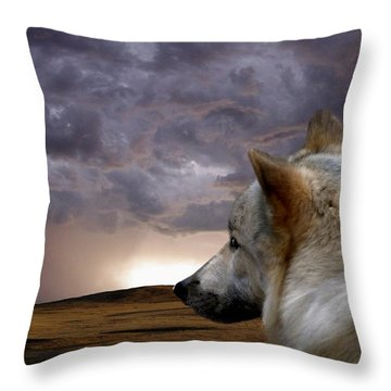 Searching For Home Throw Pillow by Bill Stephens