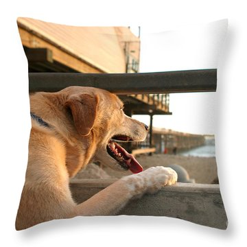 Searching The Ocean Throw Pillow by Henrik Lehnerer