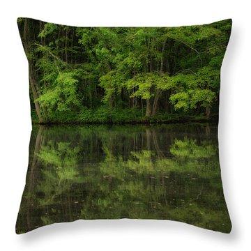 Season Of Green Throw Pillow by Karol Livote