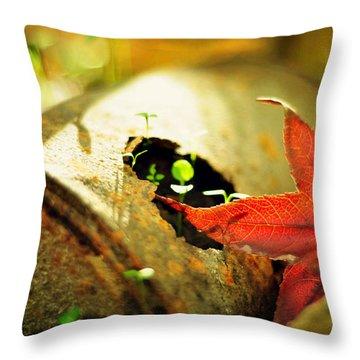 Season Of Rust Throw Pillow