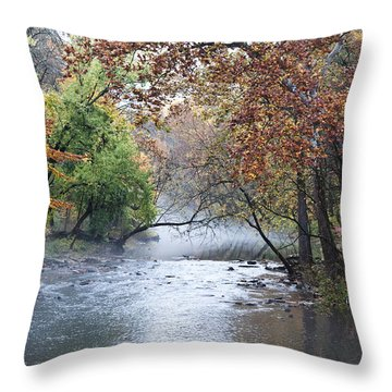 Seasons Change Throw Pillow by Bill Cannon