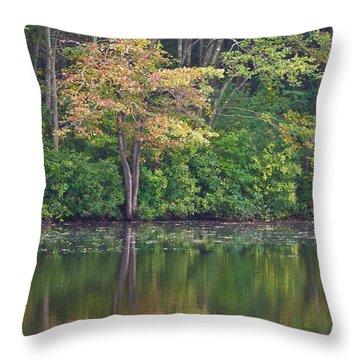 Seasons Change Throw Pillow by Karol Livote