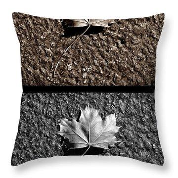 Seasons Of Change Throw Pillow by Luke Moore