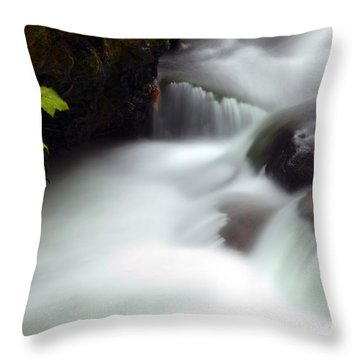 Seasons Rush By Throw Pillow by Mike  Dawson