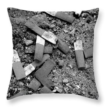 Secondhand Smoke Throw Pillow by Lisa Phillips