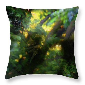 Throw Pillow featuring the photograph Secret Forest by Richard Piper