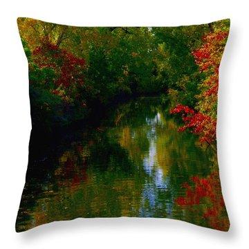 Secret Horse Creek Throw Pillow by Contemporary Luxury Fine Art