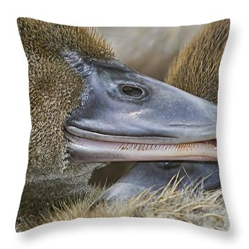 Throw Pillow featuring the photograph Secrets by Anne Rodkin