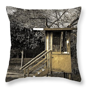 Security Check Throw Pillow by Gwyn Newcombe