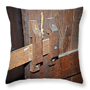 Security Throw Pillow by Susan Leggett
