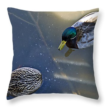See Anything Throw Pillow by Kat Besthorn