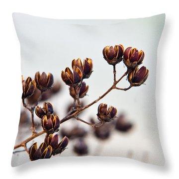 Seed Pods 1 Throw Pillow by Douglas Barnett
