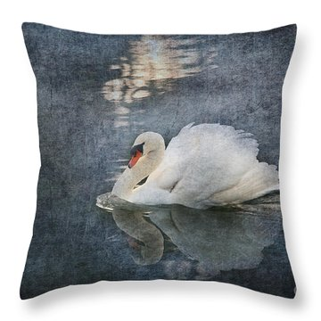 Seeing Off The Day Throw Pillow