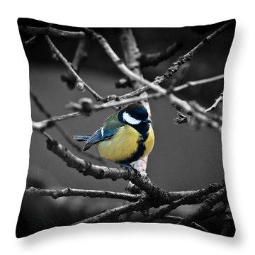 Selective Bird Throw Pillow
