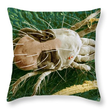 Sem Of Two-spotted Spider Mite Throw Pillow by Science Source