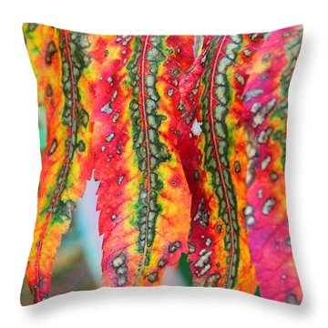 Sensuous Sumac Throw Pillow