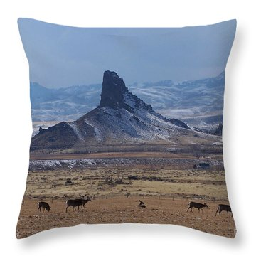 Sentinels Throw Pillow by Dorrene BrownButterfield